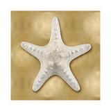 Ocean Gem on Gold VI