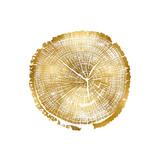 Timber Gold I
