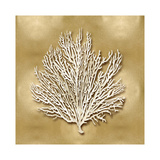 Sea Fan on Gold I