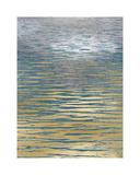 Ocean Current Reflection II