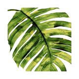 Palmier tropicalII Giclée par Melonie Miller