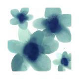 Aqua Blooms II