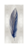 Blue Feather on Silver II