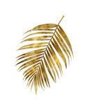 Gold Palm I
