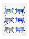Blue Cat Collection