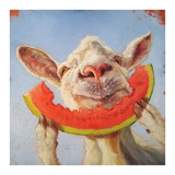 Summer Treat Reproduction d'art par Lucia Heffernan