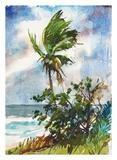 Brise océane Reproduction d'art par Richard A. Rodgers