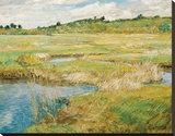 The Concord Meadow  c1890