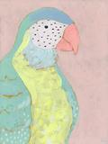 Tropical Birds - Parrot