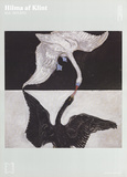 Swan  No 1