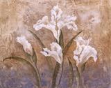 Fleurs Meditatives I