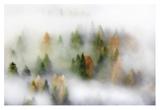 Autumn Dream Giclée par Kristjan Rems