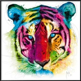 Tiger Pop Reproduction encadrée par Patrice Murciano