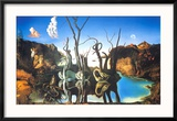 Reflections of Elephants Reproduction encadrée par Salvador Dalí