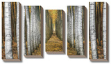 Tree Farm *Exclusive* Tableau multi toiles par Michael Cahill
