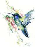 Hummingbird Indigo