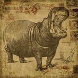 Vintage Hippo Sepia - Square