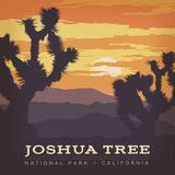 Joshua Tree Np Square