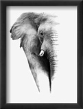 Artistic Black And White Elephant Reproduction encadrée par Donvanstaden