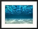 Ocean Bottom  View Beneath Surface