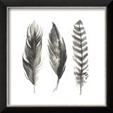 Watercolor Feathers I Reproduction encadrée par Grace Popp