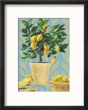 Opulent Citrus I Reproduction encadrée par Grace Popp