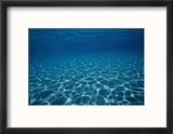 Sunlight Reflects on the Sea Floor Through Crystal Clear Blue Water Reproduction encadrée par Raul Touzon