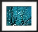 Tree at Night with Lights Reproduction encadrée par Myan Soffia