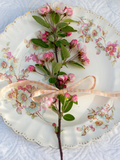 Branch of Apple Blossom on Vintage Plate