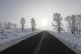 A Bare Winter Road Stretches on for Miles to the Horizon