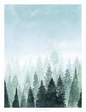 Into the Trees I