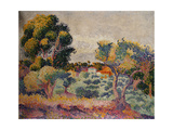 Eukalyptus und Olivenhain 1907