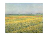 Die Ebene um Gennevilliers  Gelbe Felder (La plaine de Gennevilliers  champs jaunes) 1884
