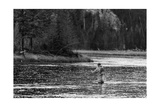 Fly Fishing Yellowstone WY B W