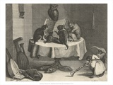 Cats Concert  1635-1636