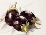 Eggplants  1927