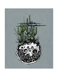 Hand Drawn Illustration or Drawing of a Moon with Some Cactus and Desert Plants on It