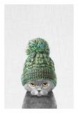 Kitten Wearing a Hat