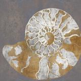 Nautilus II Reproduction d'art par Mark Chandon
