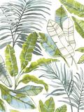 Jungle tropicale Giclée par Sandra Jacobs