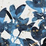 Ficus Elastica - Luxe