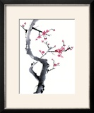 Plum Blossom Branch I