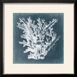 Azure Coral I