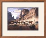Sandstone and Stolen Horses