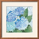 Decorative Hydrangea II