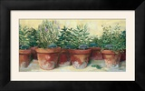 Potted Herbs I