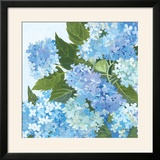 Decorative Hydrangea I