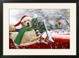 Golden Retriever Driving Car Collecting Christmas Tree