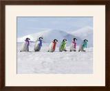 Emperor Penguins  4 Young Ones Walking in a Line