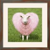 Sheep Ewe Pink Heart Shaped Wool